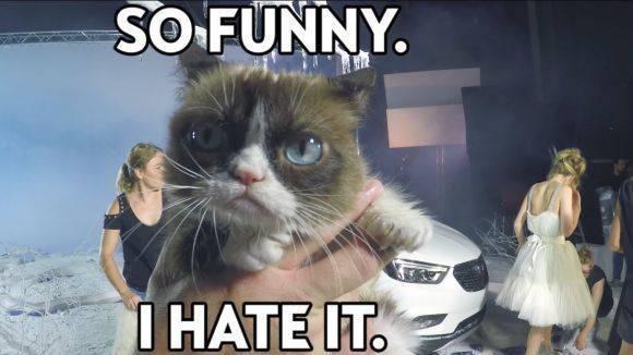 "opelgoesgrumpy: opel widmet der ""grumpy cat"" eine online-kampagne   w&v"