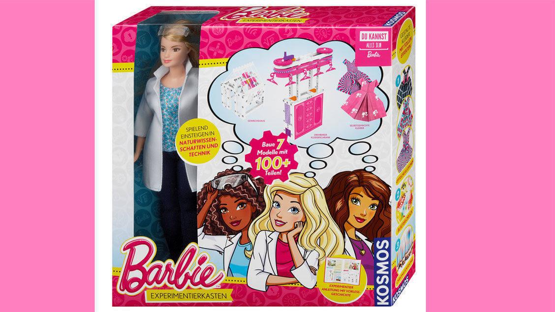 Goldener Zaunpfahl 2018 Fur Rosa Experimente Mit Barbie W V