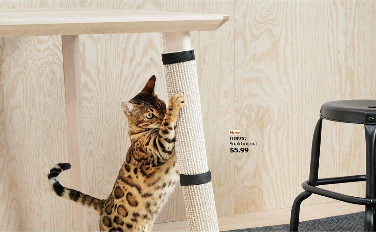 Ikea startet eigene Kollektion für Hunde und Katzen