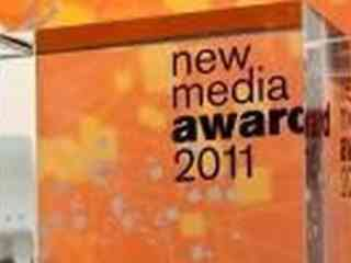 "New Media Award 2011 ""Young Lions"""